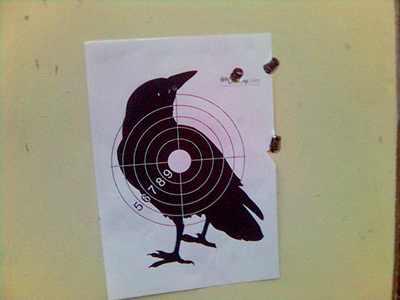 отстрел самодельных пуль