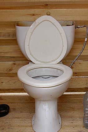 деревянный туалет