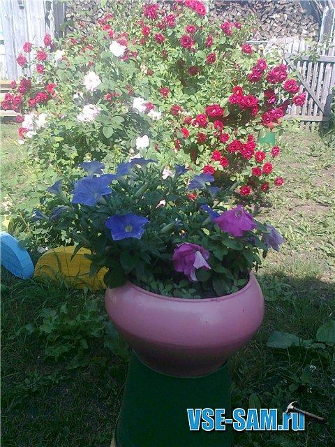 Маше для сада и огорода своими руками