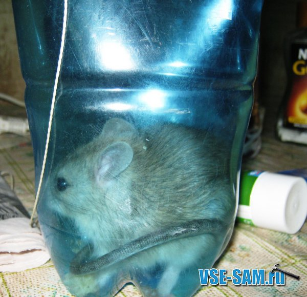 Подставка под бутылки своими руками